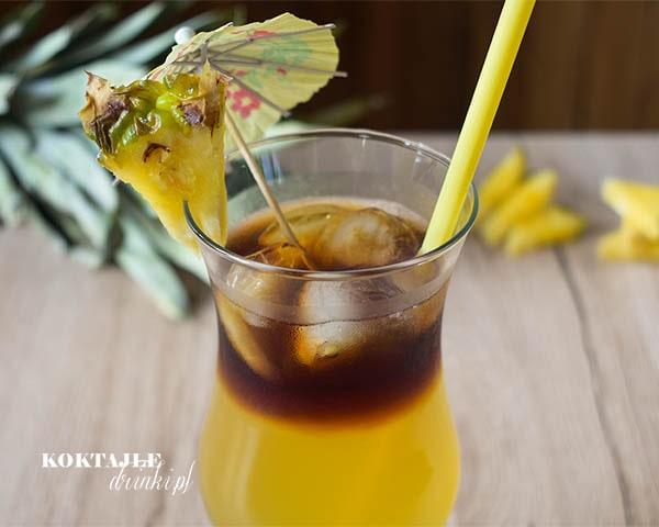 Drinki Z Jagermeister Przepisy Koktajle Drinki Pl