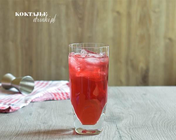 Drink z rumem, Żurawinowe Zapomnienie w szklance Collins o barwie czerwonej, żurawinowej ze sporą ilością kostek lodu.